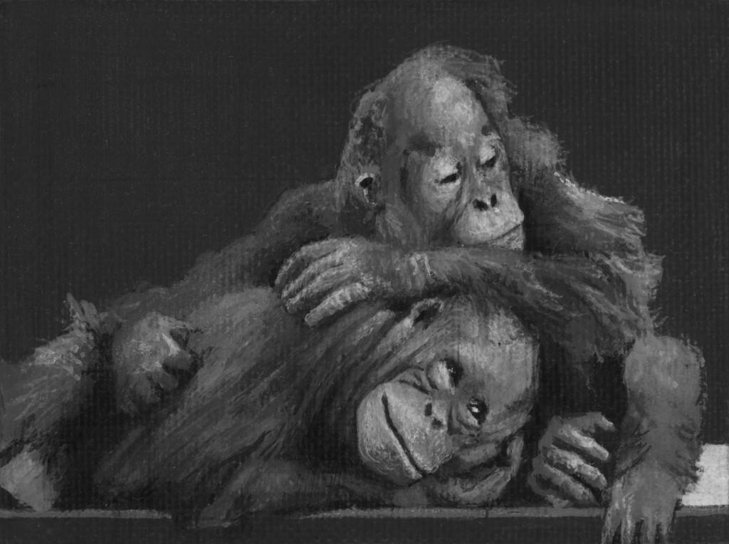 28-Monkeys